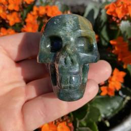 Mosagat_skull