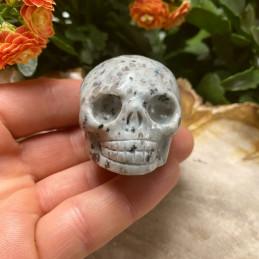 kiwi_jaspis_skull